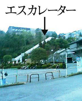 20060222_kyotosan1.jpg
